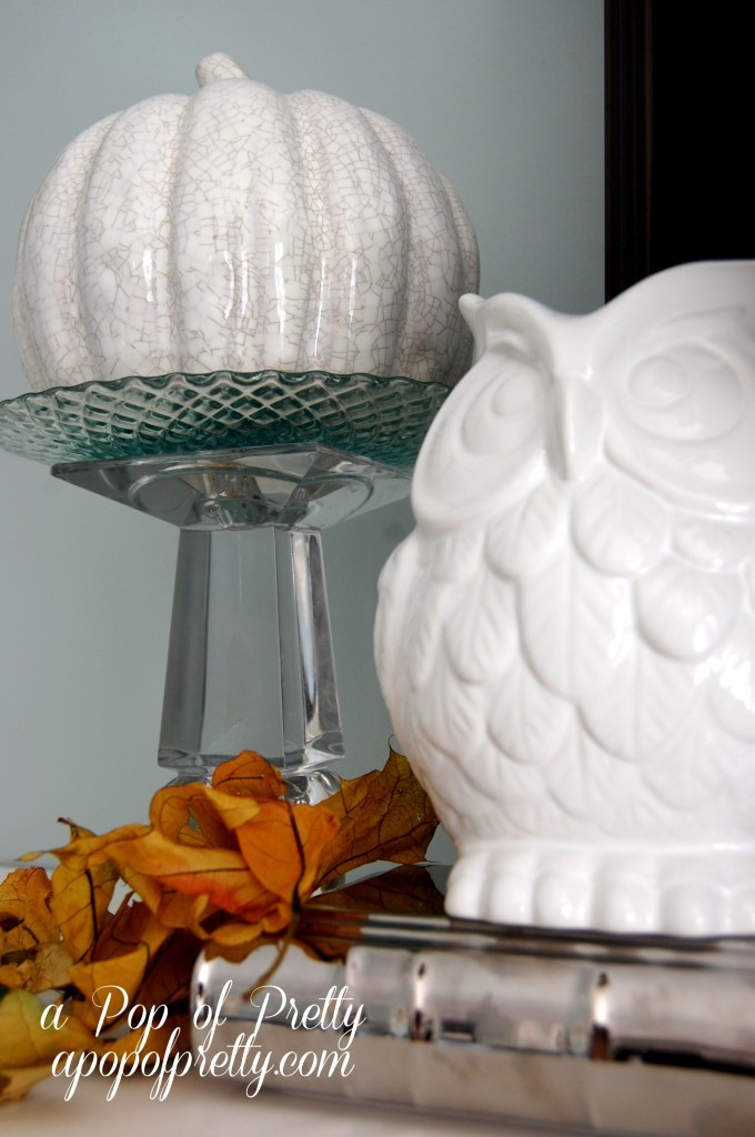 owl Fall decor