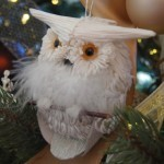Owl decor