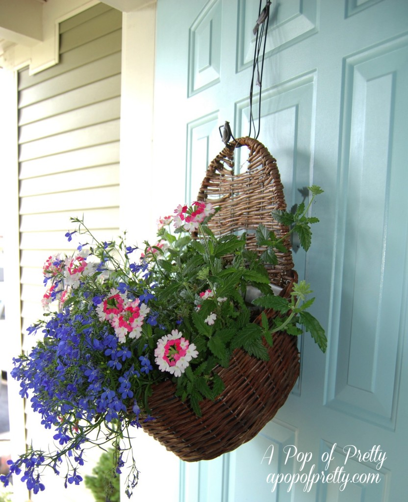acontainer gardening in a hanging basket