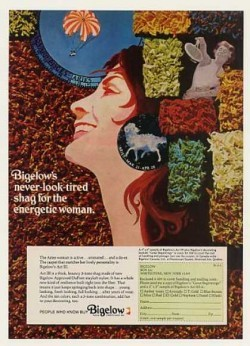 1970 Shag Carpet advertising that might make you blush! (Decor ads 15 and 16!)