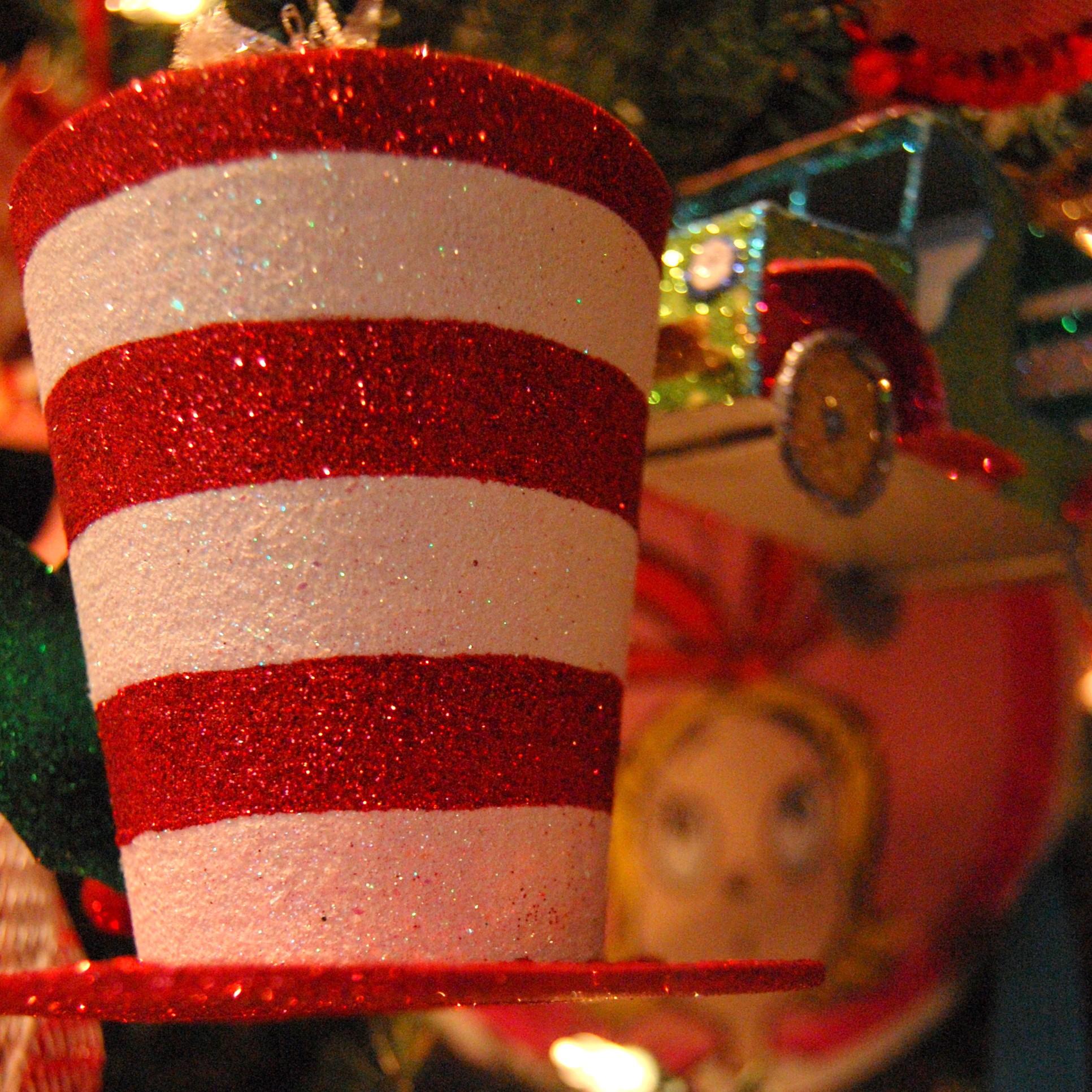 Our Dr. Seuss Christmas Tree! (2012)