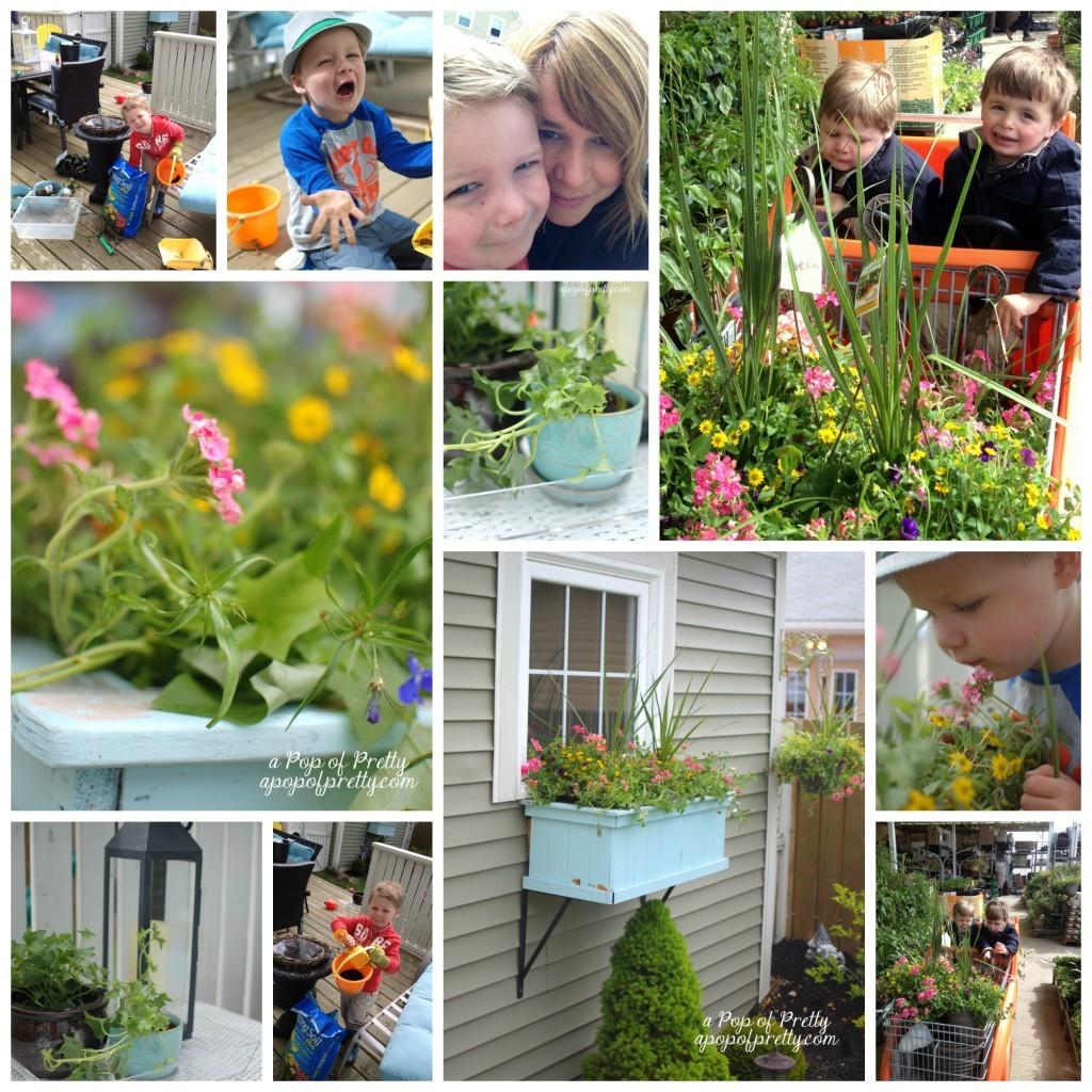 Gardening 2013 Collage
