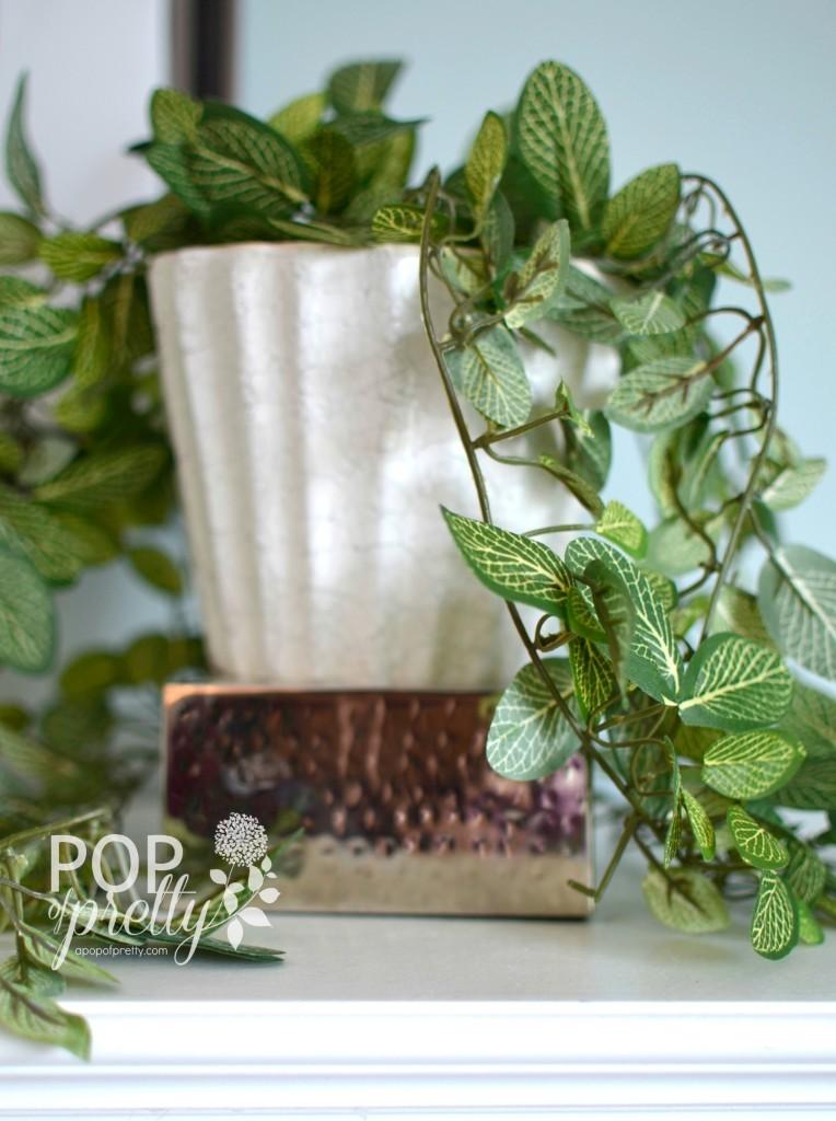 winter decorating - houseplants2