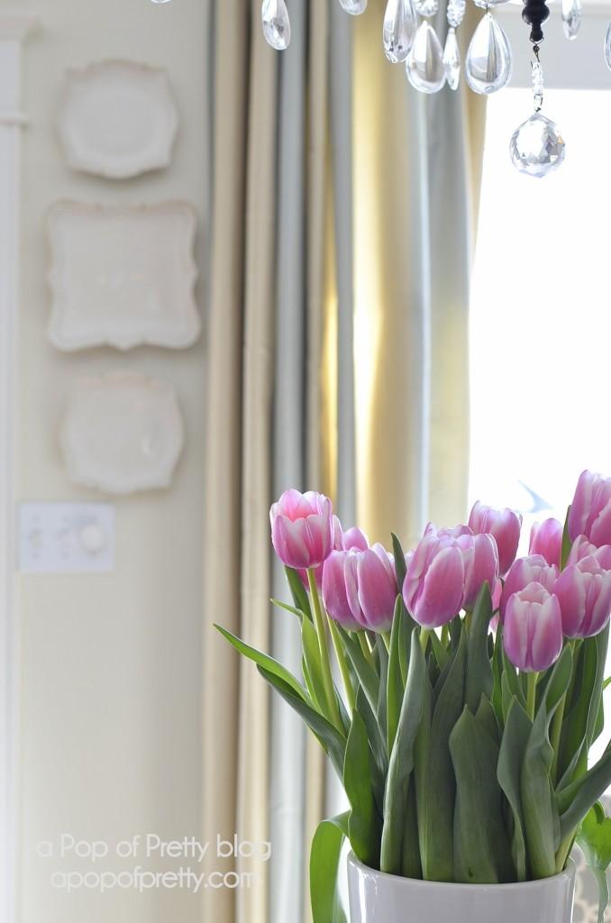 pink tulip