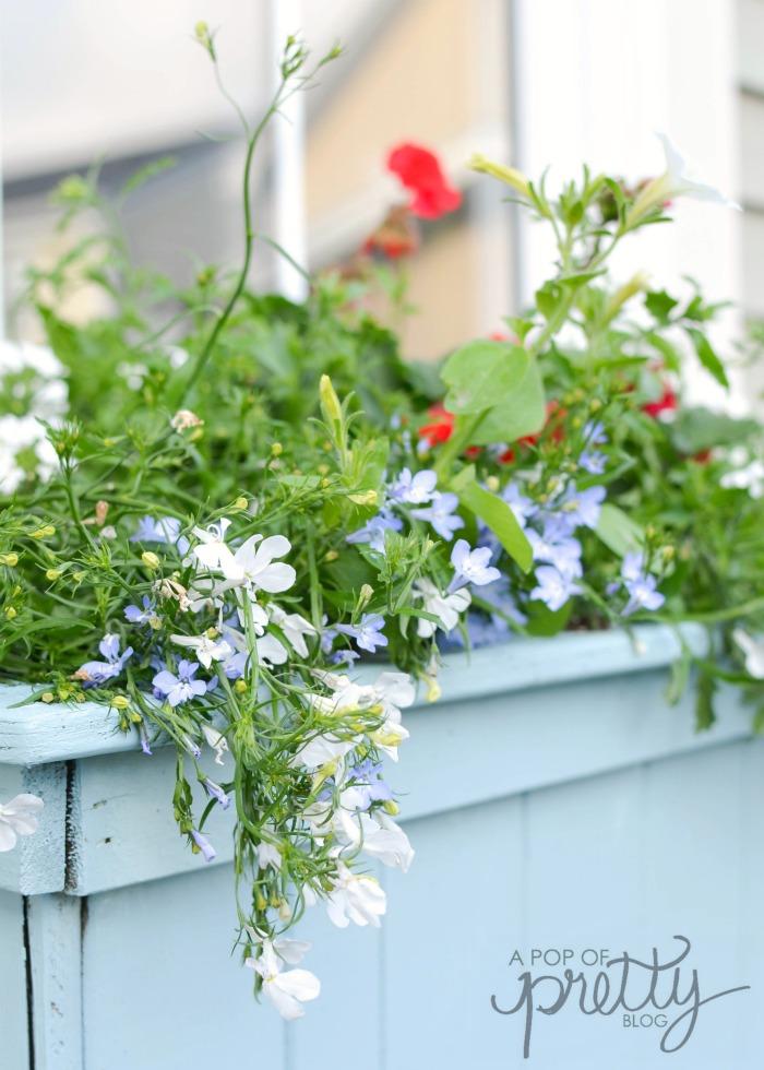 summer decorating flower box
