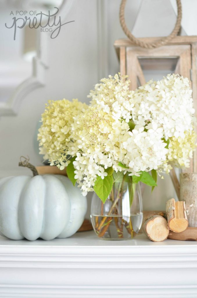 decorating with hydrangeas 2 in the Fall